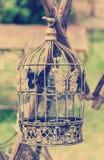 Estilo do vintage do Birdcage im Imagens de Stock Royalty Free