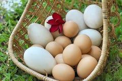 Estilo do vintage dos ovos da páscoa e dos ovos brancos Fotos de Stock