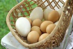 Estilo do vintage dos ovos da páscoa e dos ovos brancos Fotografia de Stock Royalty Free