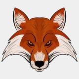 Estilo dos desenhos animados da cabeça da raposa da ilustração do vetor da mascote Imagem de Stock Royalty Free