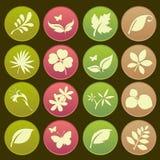 Estilo futurista de la pendiente del icono de las hojas naturales Fotos de archivo