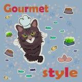 Estilo gastrónomo El cocinero del gato cocina la comida Foto de archivo libre de regalías