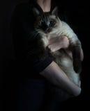 Estilo holandês pequeno mulher que guarda um grande gato vintage Fotografia de Stock Royalty Free