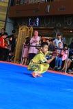 Estilo Kung Fu - Wushu de Biyan Nangung Foto de Stock Royalty Free