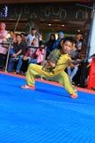 Estilo Kung Fu - Wushu de Biyan Nangung Imagem de Stock Royalty Free