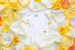 Estilo mínimo Fotografia minimalista da forma pétalas cor-de-rosa amarelas ajustadas no fundo branco flatlay Vista superior foto de stock royalty free