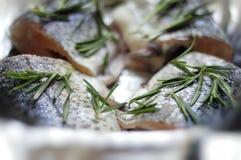 Estilo mediterráneo de los pescados de Fesh Fotos de archivo libres de regalías