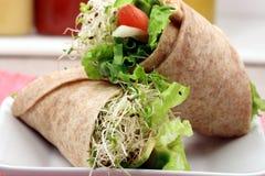 Estilo orgânico do envoltório do sanduíche foto de stock royalty free