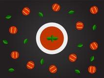 Estilo plano de la opinión superior de la sopa del tomate Fotos de archivo libres de regalías