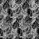 Estilo polinésio com folhas e fundo tribal Imagens de Stock Royalty Free