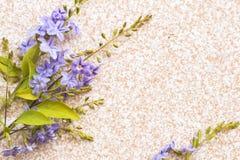 Estilo puesto plano p?rpura del centro de flores de la naturaleza de la textura del fondo en la teja imágenes de archivo libres de regalías