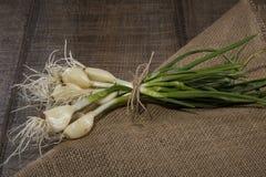 Estilo rústico com cebolas verdes Fotos de Stock