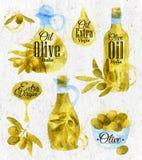 Estilo retro dibujado acuarela del aceite de oliva Fotos de archivo libres de regalías