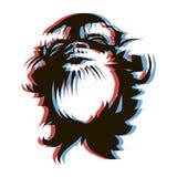 Estilo romántico del anáglifo de la cara 3D del mono Imagen de archivo libre de regalías