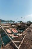 Estilo salgado secado tailandês dos peixes na piscicultura imagens de stock royalty free