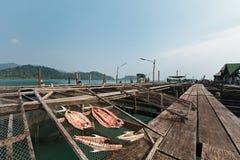 Estilo salgado secado tailandês dos peixes na piscicultura fotos de stock