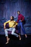 Estilo 'sexy' da forma do partido do negócio de coleção do terno de vestido da mulher Imagem de Stock Royalty Free