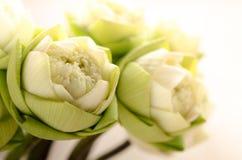Estilo tailandés plegable del loto Imagen de archivo libre de regalías