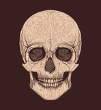 Estilo tribal del cráneo humano Blackwork del tatuaje Ilustración drenada mano del vector Foto de archivo libre de regalías