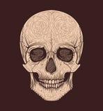 Estilo tribal do crânio humano Blackwork da tatuagem Ilustração desenhada mão do vetor Foto de Stock Royalty Free
