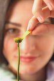 Estimation sur une fleur Images stock