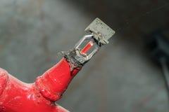 Estintore capo automatico dello spruzzatore del fuoco sul soffitto bianco Immagini Stock