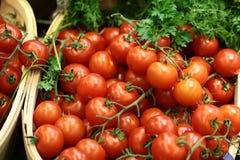 Estirón-cajas de tomates de cereza perejil y eneldo Fotos de archivo