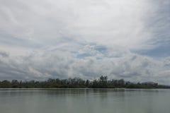 Estiramiento del mangle debajo del cielo nublado fotografía de archivo