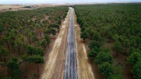 Estiramiento recto de la carretera de asfalto de la pista de despeque en bosque metrajes