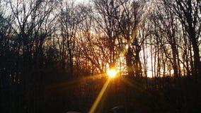 Estire la salida del sol Foto de archivo