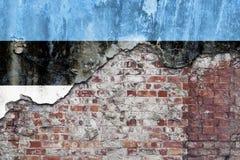 Estländsk flagga på den Grungy väggen Royaltyfria Foton