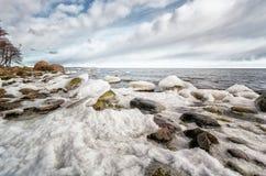 Estländsk kust Fotografering för Bildbyråer