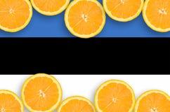 Estland flagga i citrusfruktskivahorisontalram arkivfoton