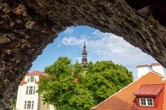 ESTLAND, TALLINN - JUNI 26, 2015: De oude toren van de stadsmuur stock foto's