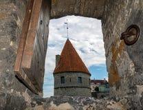 ESTLAND TALLINN - JUNI 26, 2015: Sikt av fästningtornet till och med forntida fönster royaltyfri foto