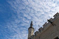 ESTLAND TALLINN - JUNI 26, 2015: Väggtorn för forntida stad royaltyfria foton