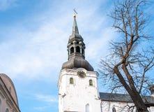 Estland Tallinn Toompea, de oude stadsbouw royalty-vrije stock fotografie