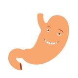 Estómago feliz Foto de archivo