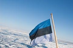 Estnische Flagge über der Ostsee stockbild