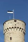 Estnische Markierungsfahne Lizenzfreie Stockfotos