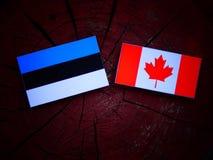 Estończyk flaga z kanadyjczyk flaga na drzewnym fiszorku odizolowywającym fotografia royalty free