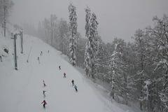 Esto-Sadok (Sochi, Ryssland) är en av den bästa vintern skidar semesterorter i subtropiska trakterna Royaltyfria Foton
