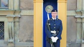 ESTOCOLMO - SUECIA, AGOSTO DE 2015: soldado de sexo femenino que guarda la casa del parlamento almacen de video