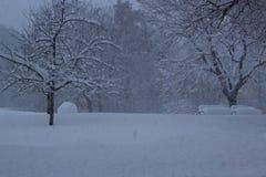 Estocolmo, Suecia, el 28 de febrero de 2018 Nieve que cae abajo en un parque, con los árboles y los bancos visibles Fotos de archivo libres de regalías