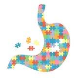 Estomac humain avec des puzzles colorés sur un fond blanc Illustration de vecteur Images stock