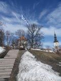 Estonia. The Estonian national flag hoisted to a mast-head at Harjumagi in Tallinn Stock Images
