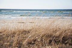 Estonia. Baltic sea nature landscape stock images