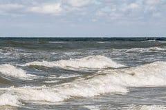 Estonia baltic Tallinn somethere blisko morza Obrazy Royalty Free