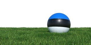 Estonia Estonian flag soccer ball lying in grass world cup 2018. Isolated on white background. 3D Rendering, Illustration Stock Image