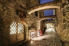 estonia Europa här town för många besök medeltida nu gammal tallinn turister Passage för ` s för St Catherine på vinteraftonen royaltyfri foto